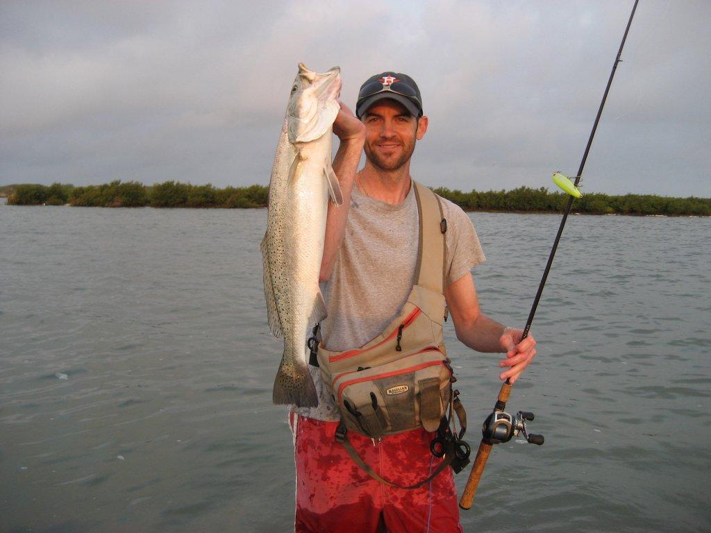 trout - a